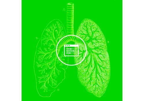body respiratory system blog image